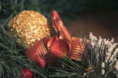 金黄球和红色圣诞节丝带在树枝 免版税库存图片