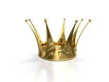 金黄的冠 图库摄影