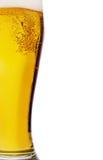 金黄的啤酒 库存图片