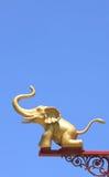 金黄的大象 库存图片