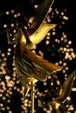 金黄的天使 库存照片