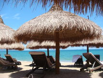 金黄的海滩睡椅 库存图片