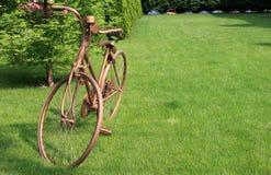 金黄的自行车 免版税库存照片
