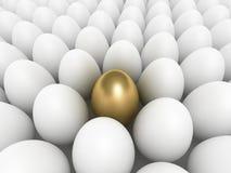金黄的鸡蛋 皇族释放例证