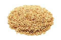金黄的flaxseeds 免版税库存照片