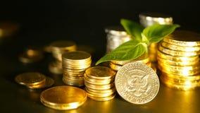 金黄硬币和新芽绿色叶子在黑背景的 财务事务、抵押和银行业务概念的成功 股票视频