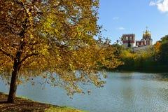 金黄秋天在Novodevichy女修道院公园  莫斯科俄国 免版税库存照片