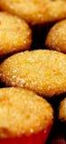 金黄蛋白杏仁饼干纵向变薄 图库摄影
