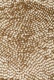 金黄衣服饰物之小金属片 免版税库存图片