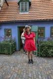 金黄车道的,布拉格城堡游人 库存照片