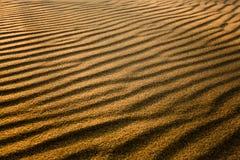 金黄金黄的沙子 库存照片