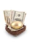 金黄鸡蛋和现金 库存图片
