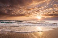 金黄东海岸佛罗里达日出 库存图片