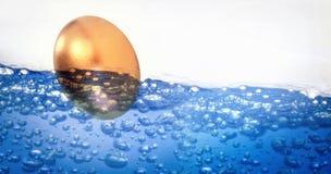 金黄东部鸡蛋的综合图象在白色背景的 库存图片