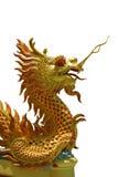 金黄中国的龙 库存照片