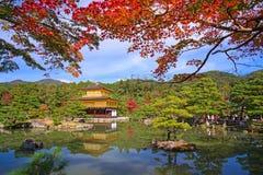 金黄亭子或Kinkakuji寺庙秋天在京都 免版税库存图片