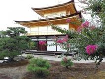金黄亭子风景在京都,日本 免版税库存照片