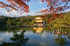 金黄亭子, Kinkaku籍寺庙,京都,日本的远的射击 免版税库存照片