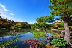 金黄亭子& x28; Kinkakuji& x29;在秋天,京都 免版税库存照片