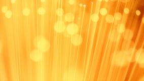 金黄亮光 影视素材