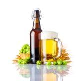 金黄啤酒用麦子和蛇麻草 库存照片