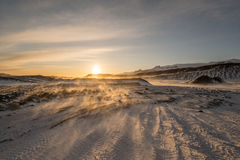 金黄圈子游览冰岛 免版税库存照片