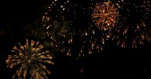 金黄摘要眨眼睛闪闪发光庆祝烟花在黑背景,欢乐新年好假日点燃 股票视频