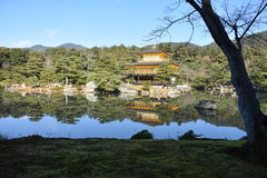金黄日本寺庙 免版税图库摄影