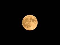 金黄月亮 免版税库存照片