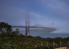 金黄桥梁有雾的门 免版税库存照片