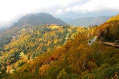 金黄森林和高山路秋天风景在一个谷在滋贺Kogen,长野日本 库存照片
