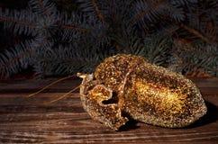 金黄橡子和云杉的枝杈在木背景 免版税库存图片