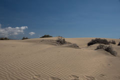金黄沙丘,沙子, 库存照片