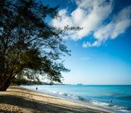 金黄海滩在热带 免版税图库摄影
