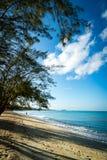金黄海滩在热带 免版税库存图片