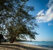 金黄海滩在热带 免版税库存照片
