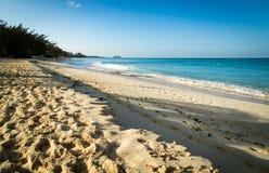 金黄海滩在热带 库存照片