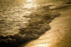 金黄海滩 免版税库存图片