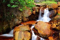 金黄瀑布在台湾 库存图片