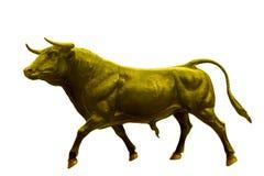 金黄黄牛 免版税图库摄影