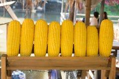金黄玉米行  库存图片