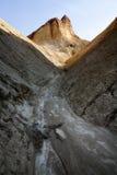 金黄的峡谷 库存照片