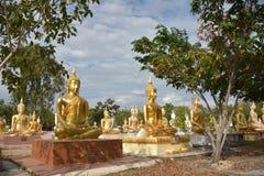 金黄的buddhas 免版税库存照片