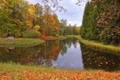 金黄秋天在凯瑟琳公园, Tsarskoye Selo (普希金) 免版税库存照片
