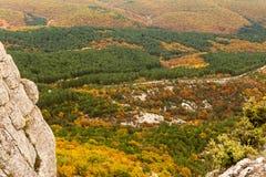 金黄秋天在山克里米亚半岛森林里 免版税库存照片