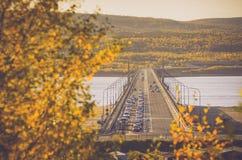金黄秋天在摩尔曼斯克 库存照片