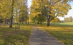金黄秋天在蓝色湖公园俄勒冈。 免版税库存照片