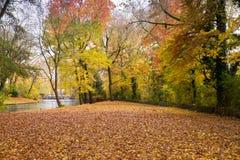 金黄秋天在Minnewater公园在布鲁日,比利时 免版税库存图片