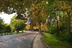 金黄秋天时间在Bernstoff公园 免版税图库摄影
