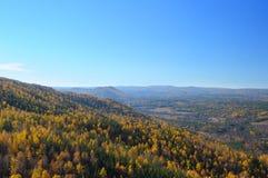 金黄秋天的乌拉尔山脉森林 免版税图库摄影